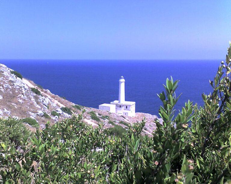 Immersioni Puglia