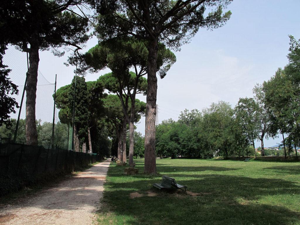 Dove andare a correre a Firenze