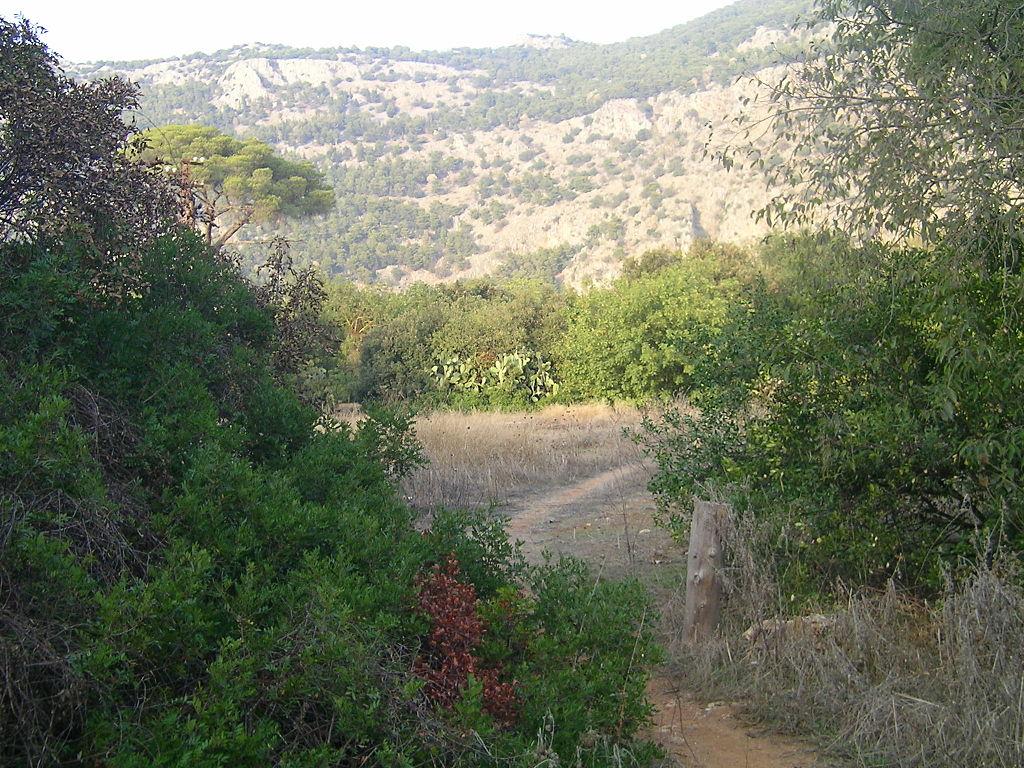 I 4 posti migliori dove andare a correre a Palermo