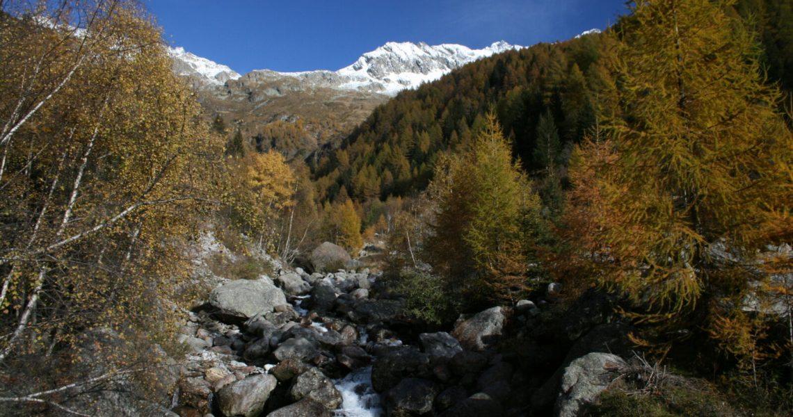 Cpertina-vera-Val-dei-Ratti