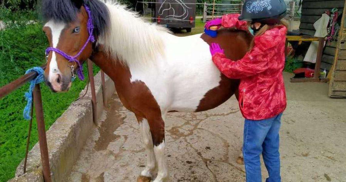 cavalli dad