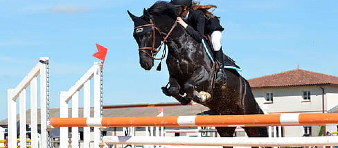 horse-horseback-riding-jumping-obstacle-sport-thumbnail