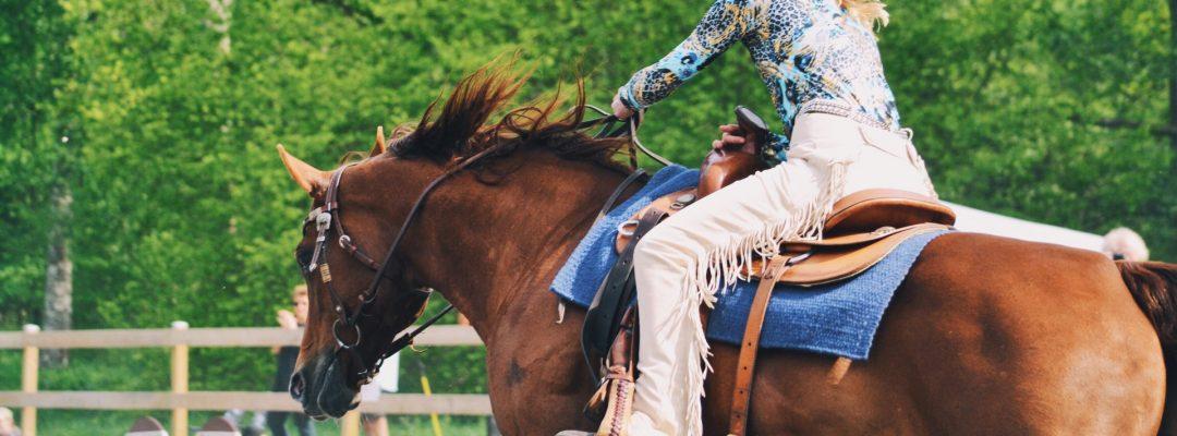 rodeo-horse-riding-X62Q3HL